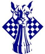 Blue Panther LLC